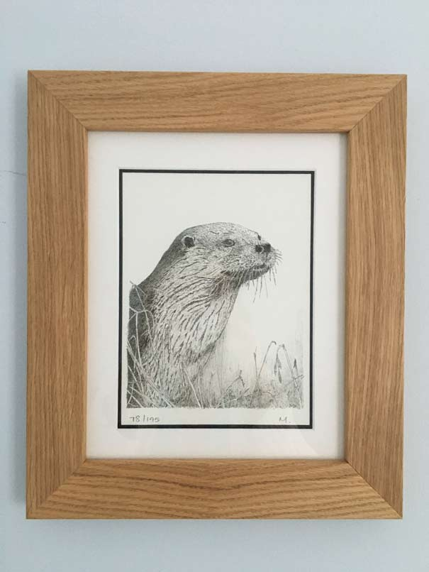 Otter by Michael Phillips