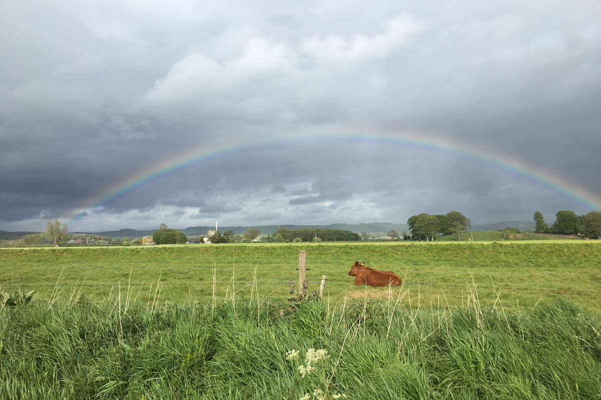 Rainbow near Applegarth